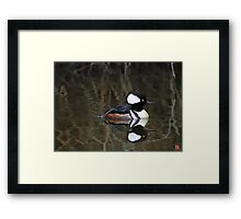Hooded Merganser- Male Framed Print