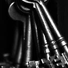 Skeleton Keys by Chris Richards