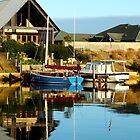 marina lifestyle by SUBI