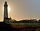 Pigeon Point At Sunset by Scott Johnson