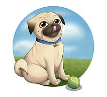 Pug Playtime Photographic Print