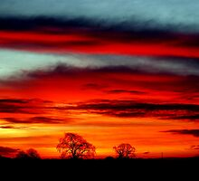 """DAWNS BEAUTIFUL SKIES"" by snapitnc"
