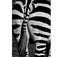 The end of a Zebra Photographic Print