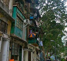 A stroll along Wing Lee Street by robigeehk