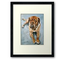 So tired today Framed Print