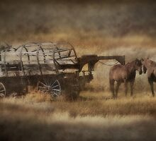 Covered Wagon. Relic of the Pioneers. Montana. USA. by PhotosEcosse