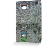 what can you see through the window Greeting Card