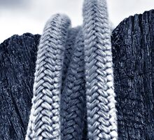 Coiled Security by Christopher Meder Photography