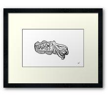 Cuttlefish Framed Print