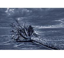 Fallen Warrior Photographic Print
