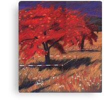 Apfelgarten Canvas Print