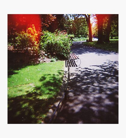 Dublin - Saint Stephen's Green park Photographic Print