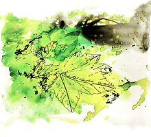 Spring Leaves by Illustrated Planet