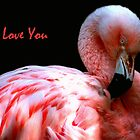 I Love You by Linda More