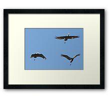 Air Show Framed Print