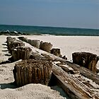 Wooden Beach by tconfer983