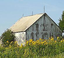 Old World Timber and Sunflowers by Karen  Rubeiz