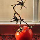 You Say Tomato, I Say Tomatoe by SuddenJim