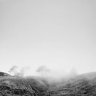 The Fog  by Tomasz-Olejnik