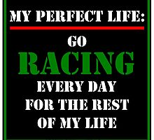My Perfect Life: Go Racing by cmmei