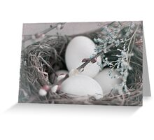 Easter, Soft and Tender Greeting Card