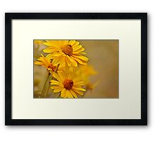 Yellow = Cheer Framed Print