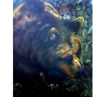 Michigan Black Bear Photographic Print