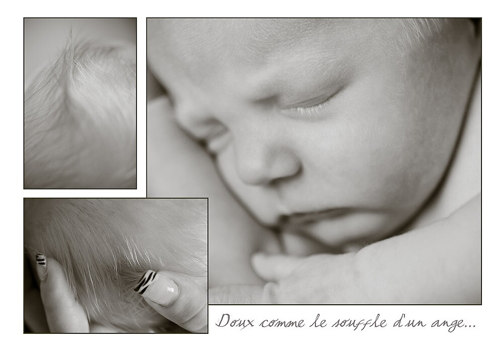 Doux comme le souffle d'un ange... by Johanne Brunet