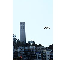 Coit Tower Photographic Print