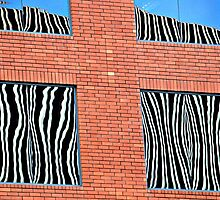 Urban Zebras-Riverside, CA by Deborah Downes