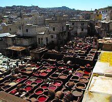 Tannery - Fez, Morocco by Jamie Alexander
