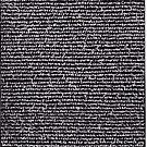 """""""Dictionary 14"""" (cooperative-crossbill) by Michelle Lee Willsmore"""