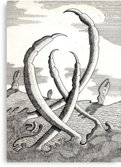 161 - CLAWS VEGETATION - DAVE EDWARDS - INK - 1988 by BLYTHART