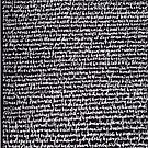 """""""Dictionary 29"""" (hoopla-hypocaust) by Michelle Lee Willsmore"""