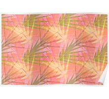 Pink Fronds Wallpaper Poster