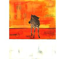 Zebra at Sunset Photographic Print
