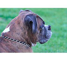 Profile of Tyson Photographic Print