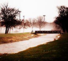 Winter Fog over the Walnut Creek by cdgo77