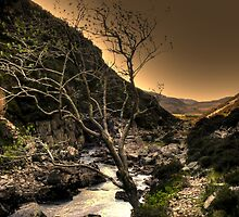 Looking Down the Valley by Chris Cherry