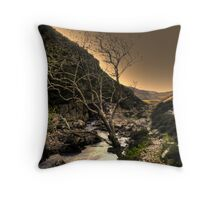 Looking Down the Valley Throw Pillow