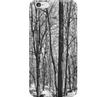 Christmas Greeting Card - Peace on Earth - Snowy Woods iPhone Case/Skin