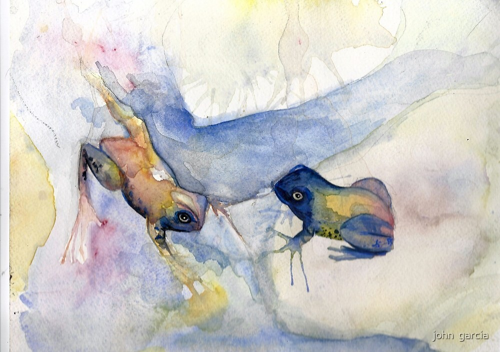 playful frogs  by john  garcia