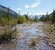 Creek runs through it  by zumi