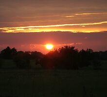 Orange Sunset by Scraylan