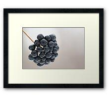 Blue Seeds Framed Print