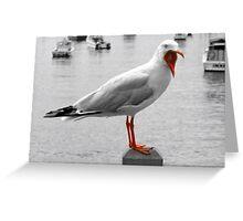 Screaming Gull Greeting Card