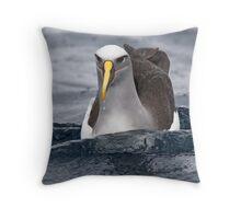 Buller's Albatross - east of Eden Throw Pillow