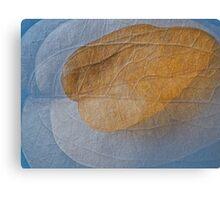 Dead leaf as light as air Canvas Print