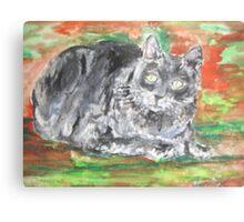 Smalls (My Cat) Metal Print