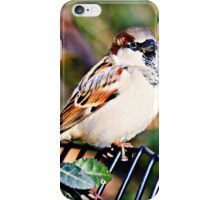 Sparrow Watches iPhone Case/Skin